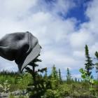2012-06-11-15-Saskatchewan.jpg