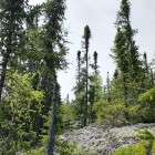 2012-06-12-06-Saskatchewan.jpg