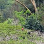 2012-12-26--23 Uganda