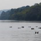 2013-01-02--21 Uganda