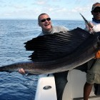 Sailfish_1