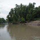 2013-08-21-2-Trinity-River