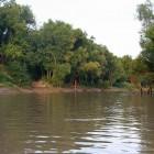 2013-08-21--40 Trinity River