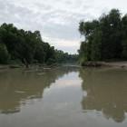 2013-08-21-5-Trinity-River