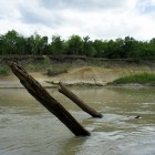 2013-08-21-96-Trinity-River