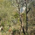 2014-03-16-42-Indien