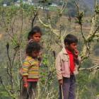 2014-03-21--91B Indien