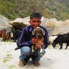 2014-03-23--38 Indien