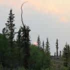 2014-07-11--19 Kanada