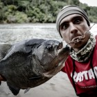 2015-02-01--33 Südamerika Piranha