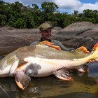 2015-02-08--25 Südamerika Redtail 1.27m