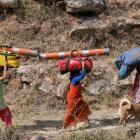 2016-04-03--34 Indien