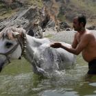 2016-04-03--70 Indien