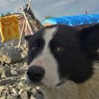 2016-08-22--15 Sibirien