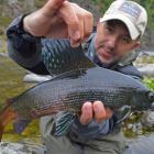 2016-08-25--25 Sibirien