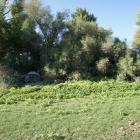 2016-09-28--11 Ebro