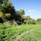 2016-09-28--9 Ebro